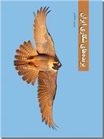 خرید کتاب پرنده های شکاری ایران از: www.ashja.com - کتابسرای اشجع
