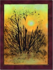 کتاب مرغان شاخسار طرب - رمان پرنده خارزار - خرید کتاب از: www.ashja.com - کتابسرای اشجع