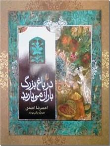 کتاب در باغ بزرگ باران می بارید - داستانی برای نوجوانان - خرید کتاب از: www.ashja.com - کتابسرای اشجع