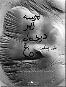 کتاب پرسه زیر درختان تاغ - داستان فارسی - خرید کتاب از: www.ashja.com - کتابسرای اشجع