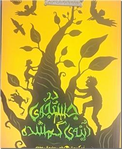 کتاب در جستجوی آینه گمشده - رمان نوجوانان - دوباره با برادران گریم - خرید کتاب از: www.ashja.com - کتابسرای اشجع