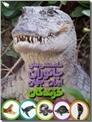 خرید کتاب دانستنی های جانوران ایران و جهان - خزندگان از: www.ashja.com - کتابسرای اشجع